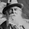 In the Garden: Re-Reading Whitman