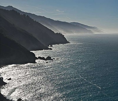 Post image for Big Sur, Elephant Seals, Hector Viel Temperley