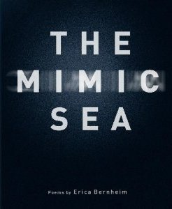 Post image for The Mimic Sea